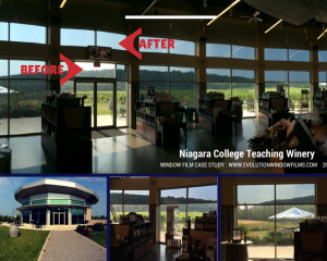 Niagara College Window Film Before and After for Business, Solar Control