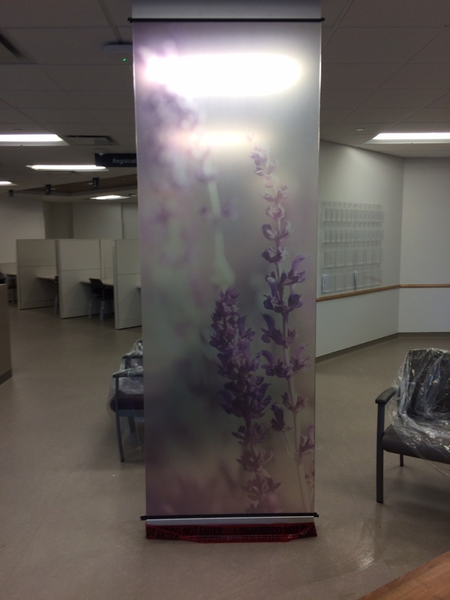 Trafalgar Hospital Window Film Oakville
