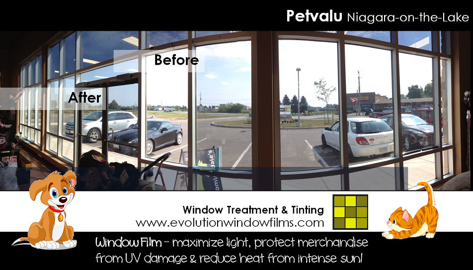 Pet Valu Niagara-on-the-Lake Window Film